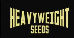 Heavy Weight Seeds
