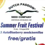 Summer Fruit Festival