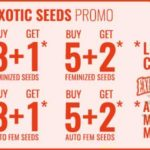 Promo Exotic Seeds